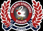 BOX-RING ZÜRICHSEE HORGEN